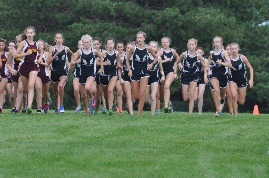 Exciting+season+ahead+for+Maroon+cross-country