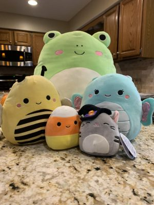 Becca Youngers' personal collection of Squishmallows