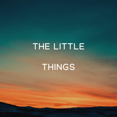 The Posts favorite movie reviewer, Jake Olson, gives his thoughts on The Little Things