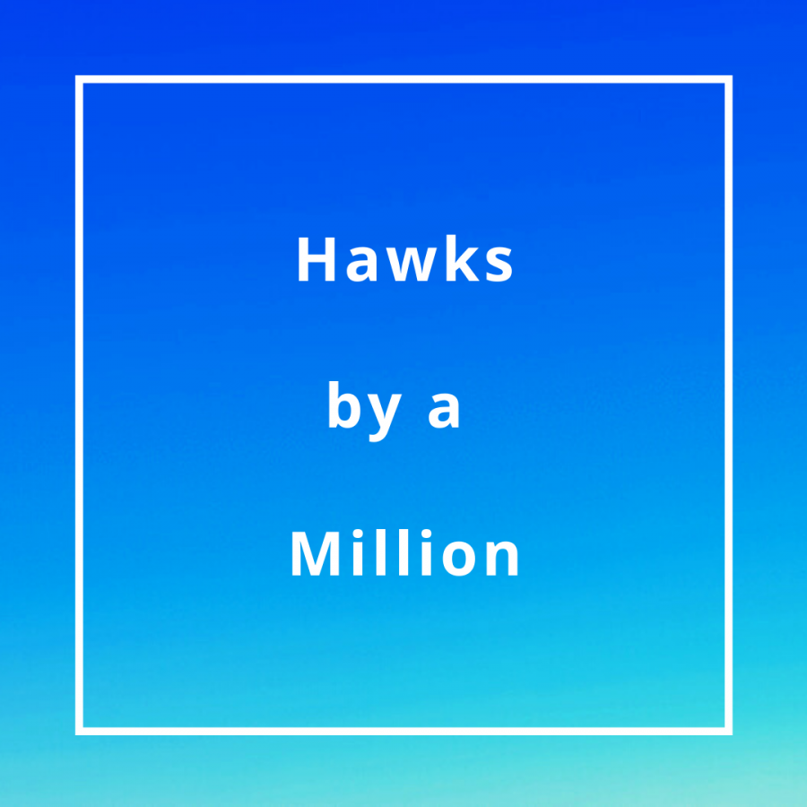 Hawks+by+a+Million