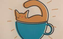 Welcome to Coffee Cats: the first catfe in Des Moines